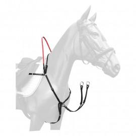 SecuTrust fortøj til hesten